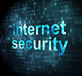 domestic-internet-security