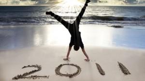2011 IT success